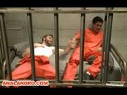 Как живут геи в русской тюрьме порно фото 504-263